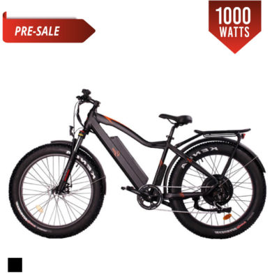 fat tire electric bike 1000w