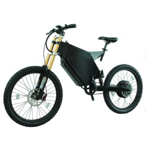 fat tire folding electric bike