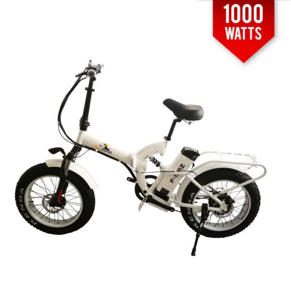 electric bike 1000 watt