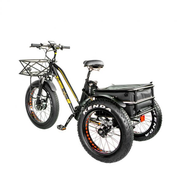 1000w electric bike