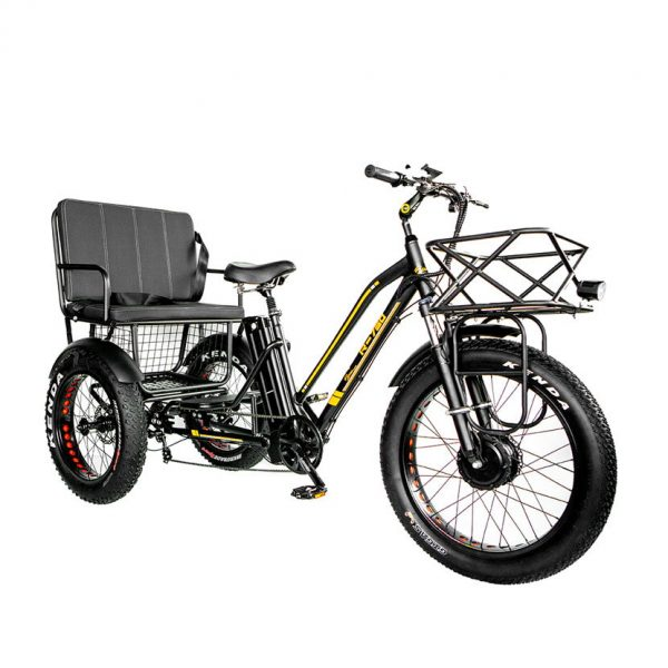 fat tire electric trike 750w