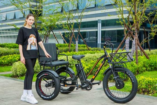 electric fat tire trike
