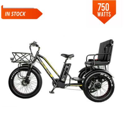 fat tire electric trike